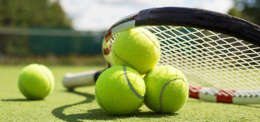 бесплатные прогнозы на теннис