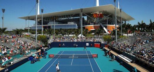 теннисные ставки